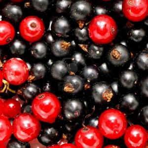 Черная смородина-вишня ароматизатор