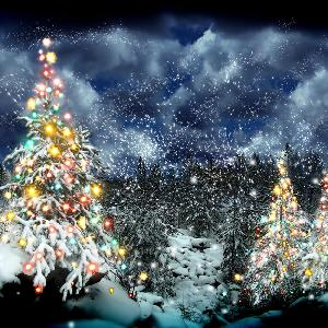 отдушка рождественская ночь
