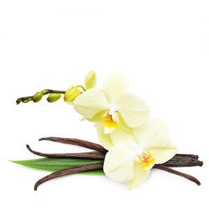 отдушка орхидея и ваниль